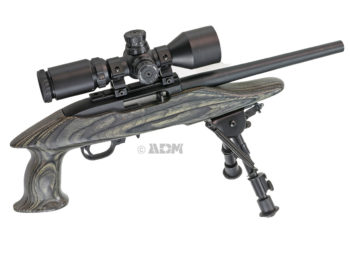 Ruger 1022 Charger Pistol